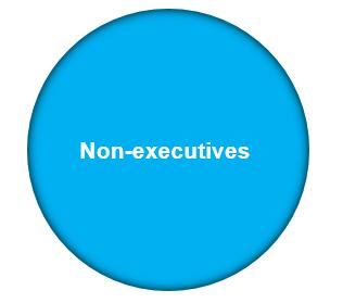 Functiegebieden – cirkel Toezicht & Commissariaat